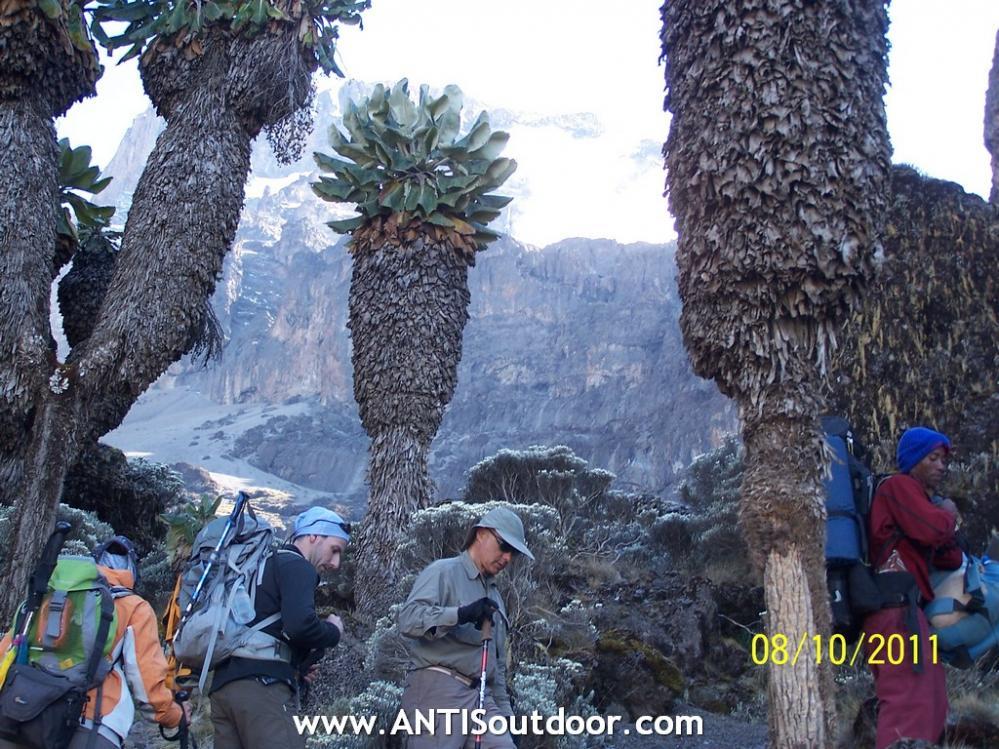 Kilimanjaro confirmado, expediciones a las Siete Cumbres