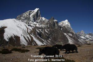 Trekking del Everest, vive el Nepal